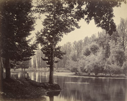 View on the Dhul Canal [Srinagar].